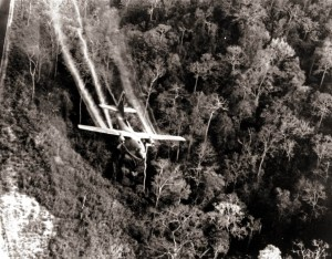 VA Approves Coverage for Agent Orange Exposure: Military Connection