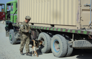 Staff Sgt. Shawn Martinez and Bono, a tactical explosive detection dog, inspect an Afghan truck for explosives near Forward Operating Base Sharana, Afghanistan. (U.S. Army photo by 2nd Lt. Jacob Giardini)