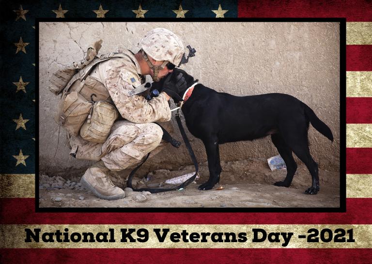K9 Veterans